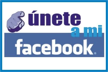 Facebook para políticos - Marketing Político en la Red