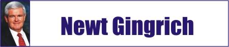 Newt Gingrich - Marketing Político en la Red