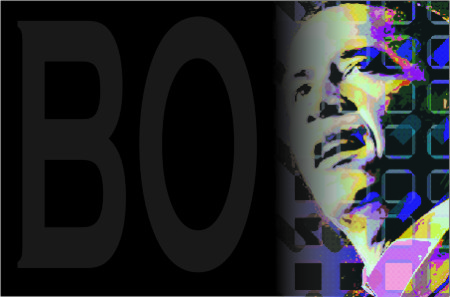 Barack Obama OnLine - Marketing Político en la Red
