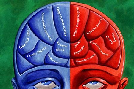 cerebro politico