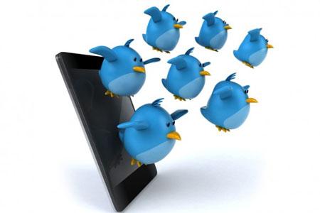 Twitter y política