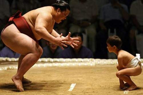 sumo-fighters