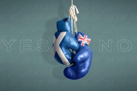 scottish-independence-referendum-survey-boxing-glove_450