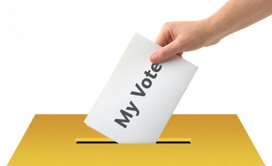 Resultado de imagen para votante